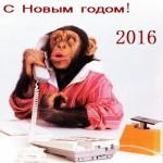 Гороскоп на 2016 год — год Огненной Обезьяны