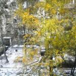 В Рязани пошёл снег… Праздник